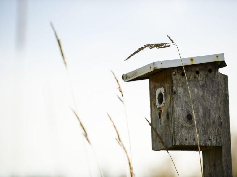 BIRD HABITAT