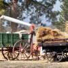 Farming Days