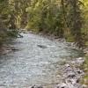 Lussier River